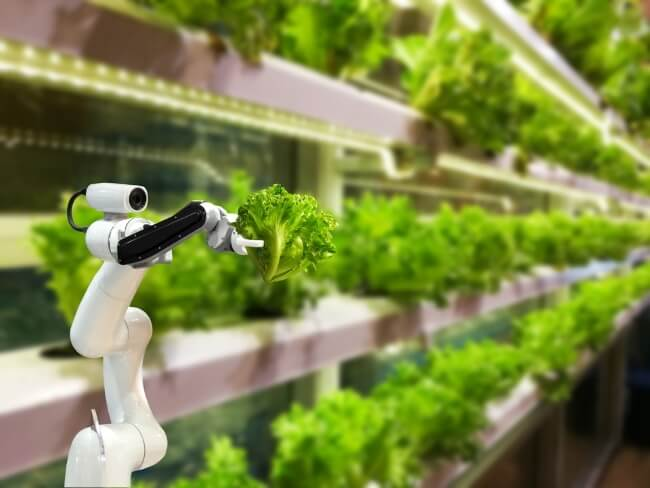 itelligence smart farming