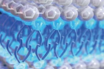 Ionic Liquid Electrolytes for Supercapacitors